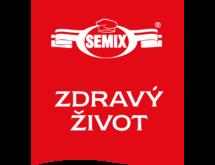 Логотип Semix
